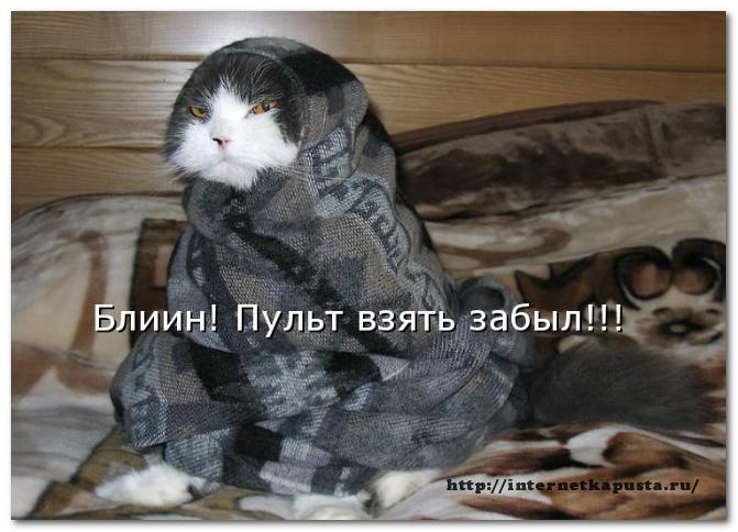 Zachem-kommentirovat-blogi5