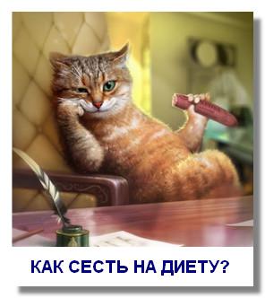 kak-izbavitsya-ot-vrednyx-privychek4