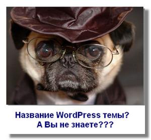 kak-uznat-nazvanie-wordpress-temy