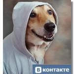 Сайт «ВКонтакте» временно недоступен…Конец света или просто жара?