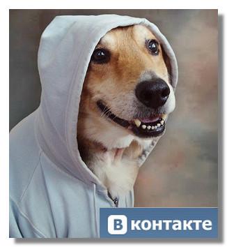 sajt-vkontakte-vremenno-nedostupen