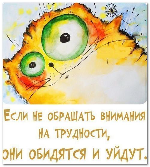 kak-mozhno-zarabotat-na-wordpress11